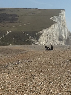 Image of beach in Sussex with cliffs