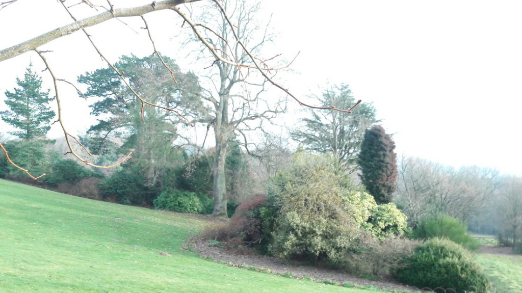 Image of Outside Grounds at Standen
