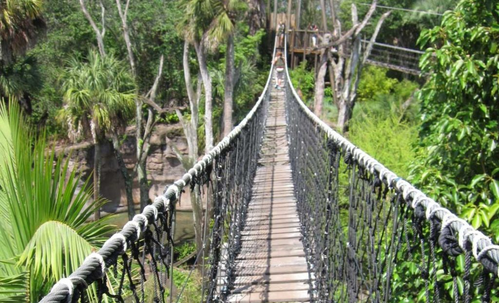 Photo of a rope bridge across a ravine