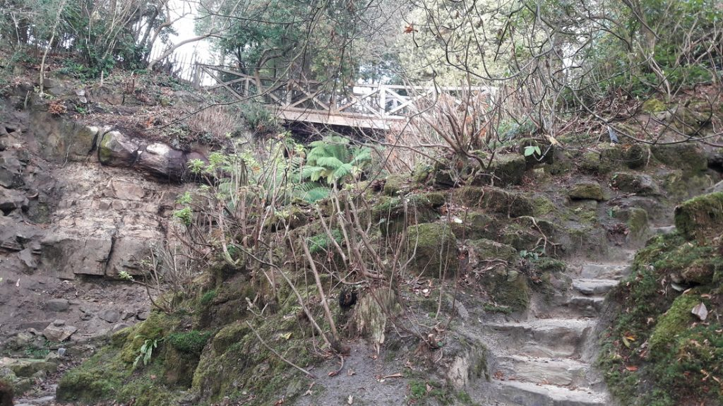 Image of Quarry Garden at Standen